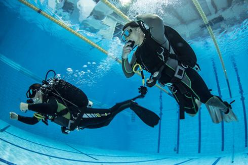Курс Open Water Scuba Diver в Школе технического дайвинга.