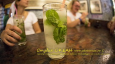CubaS.Kravchuk156