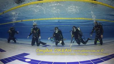 Dive011