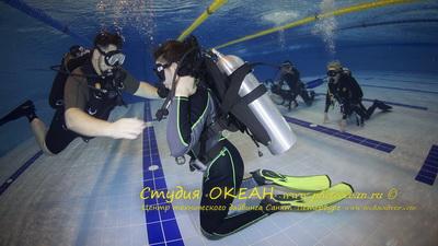 Dive016