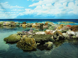 Great-Barrier-Reef-in-Austraila